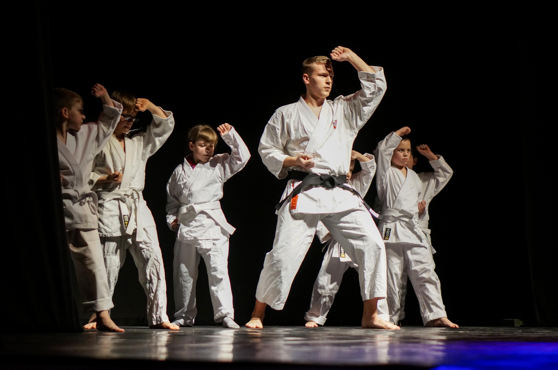 karatestudija2